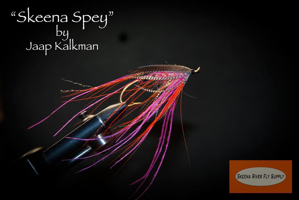 Skeena-spey-SBS-00