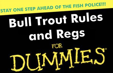 Bull Trout FOr Dummies.