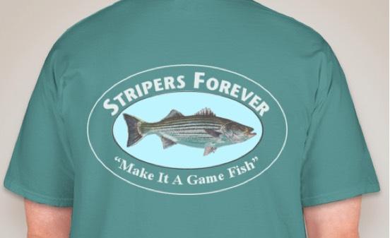 Stripes Forever Tee