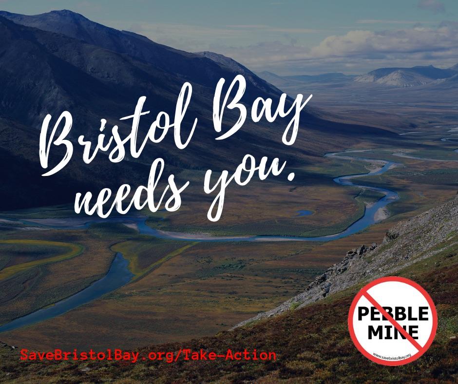 Stop The Pebble Mine