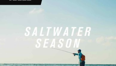 Saltwater Season