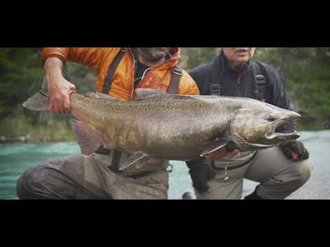 FLY FISHING in Patagonia : Monster Kings - Moldy Chum